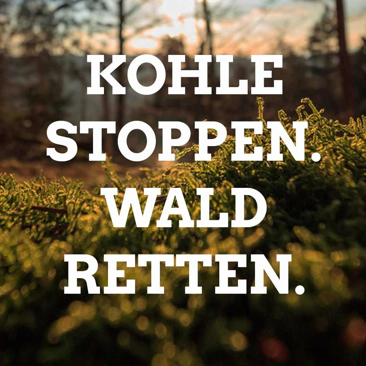 Kohle-stoppen-Wald-retten